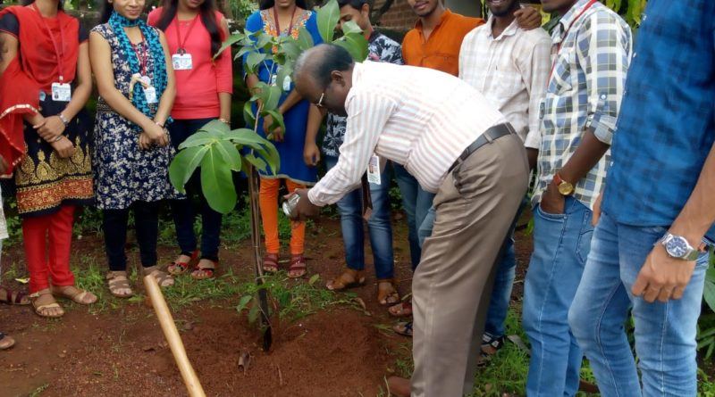 Prin. V.A.Khot planting a tree in the college campus